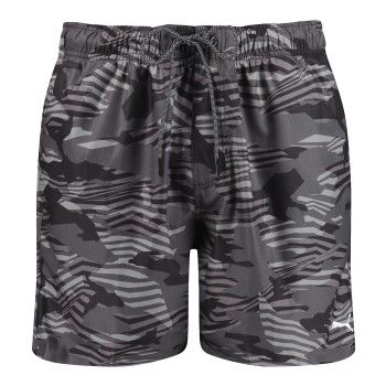 Puma Seasonal Enjoy Swim Shorts