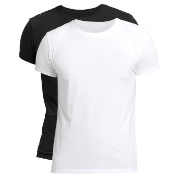 Gant 2 stuks Basic Crew Neck T-Shirt
